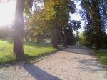 Parque Tivoli 5